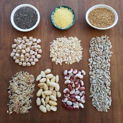 grãos e oleaginosas